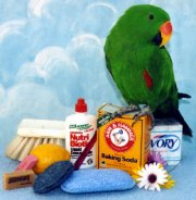 Bird Cleaners